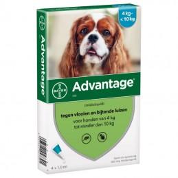 Advantage pipetas antiparasitárias para cães