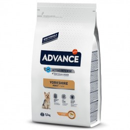 Advance Yorkshire Terrier Adult