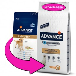 Advance Labrador & Golden Retriever Adult