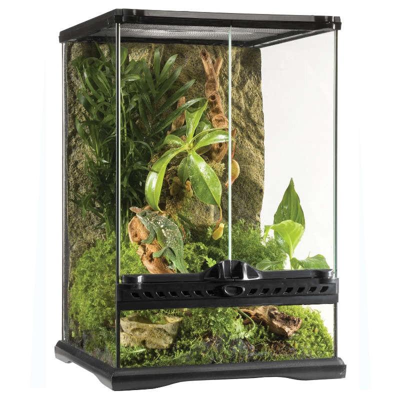 Terrário de vidro Exo Terra Mini Tall