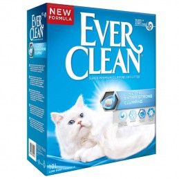 Ever Clean Extra Strong Unscented Super Aglomerante