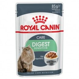 Royal Canin Digestive Sensitive Care em molho