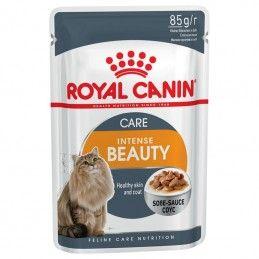 Royal Canin Intense Beauty Care em molho