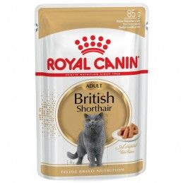 Royal Canin British Shorthair Adult wet