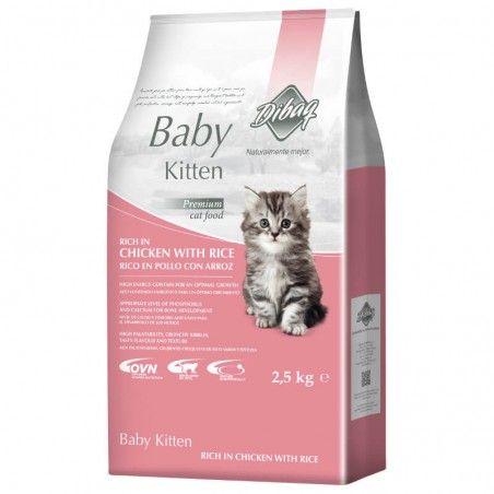 Dibaq Dnm Baby Kitten