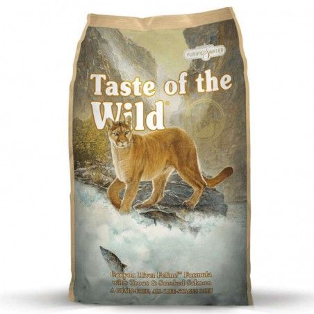 Taste of the Wild Cat Canion River Truta & Salmão Fumado