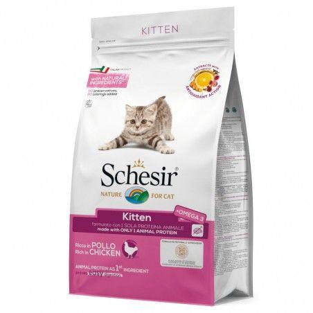Schesir Cat Kitten Chicken