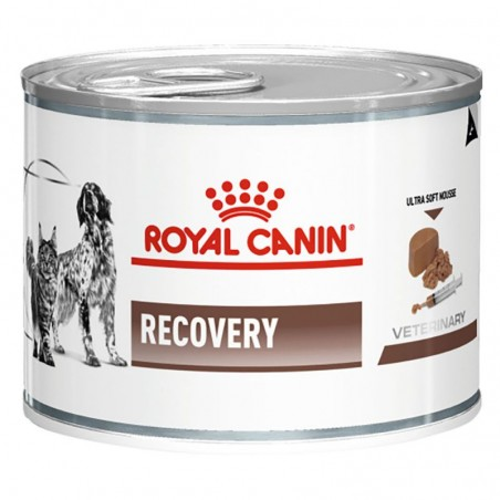 Royal Canin Veterinary Diets Recovery Dog & Cat wet