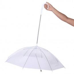 Freedog guarda chuva