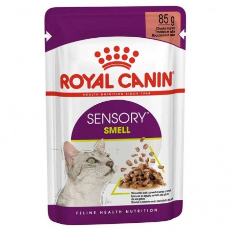 Royal Canin Sensory Smell em molho