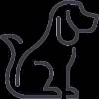 Comida e acessórios para cães ao Melhor Preço - Powerpet®