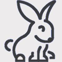 Acessórios para roedores & furões ao Melhor Preço - Powerpet