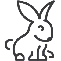 Acessórios para roedores ao Melhor Preço - Powerpet
