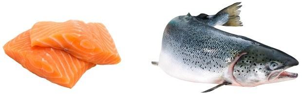 Óleo-salmão.jpg