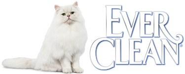 everclean_online_1.jpg
