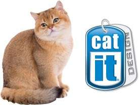 logo_catcatit1.jpg